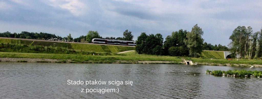Kiełpinek_Fotor